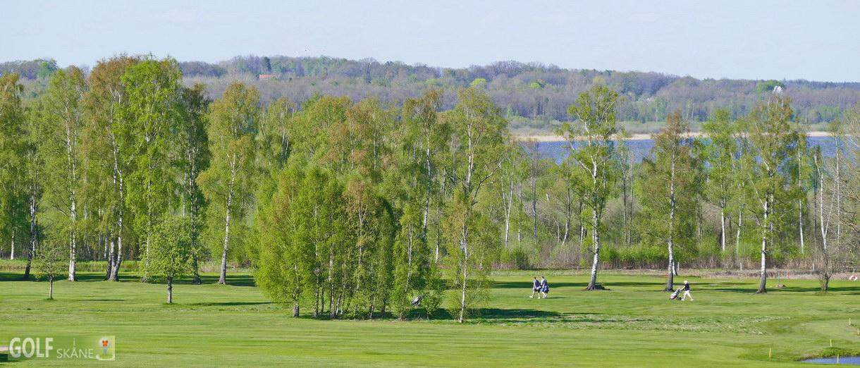 Golf i Skåne banbild- Skyrups Golfklubb Adr. golfiskane.se