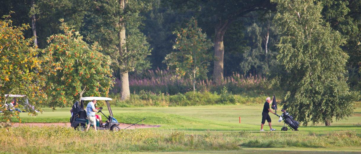Golf i Skåne - Skyrups Golfklubb - Golfare