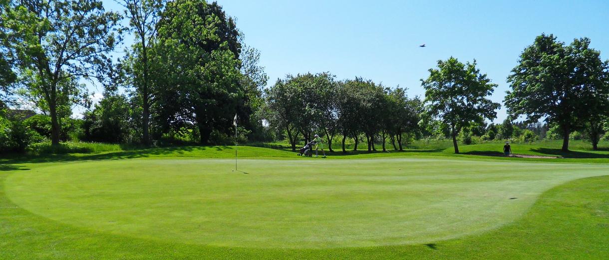 Golf i Skåne - Eslövs Golfklubb bild från banan 4