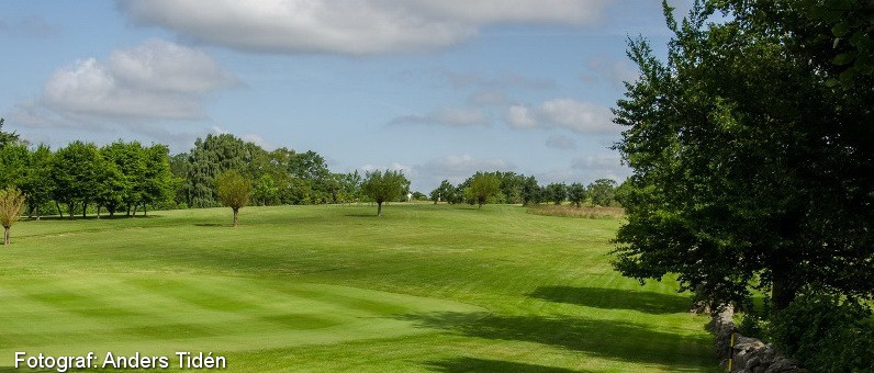 Golf i Skåne - Romeleåsens Golfklubb - bild från banan 8