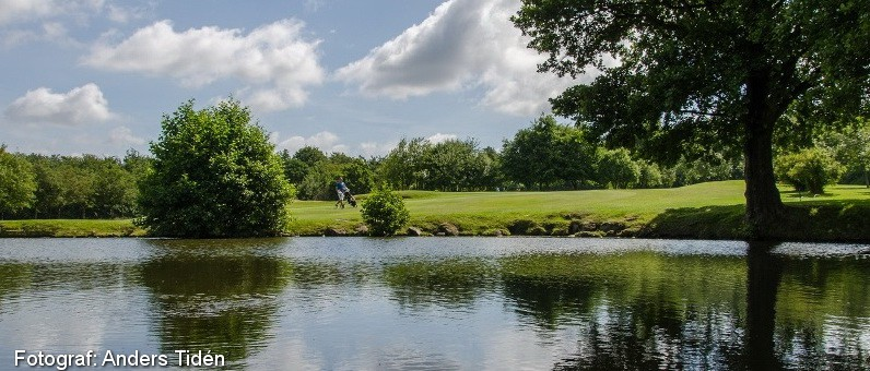 Golf i Skåne - Romeleåsens Golfklubb - bild från banan 10