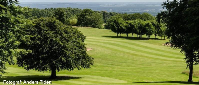 Golf i Skåne - Romeleåsens Golfklubb - bild från banan 11