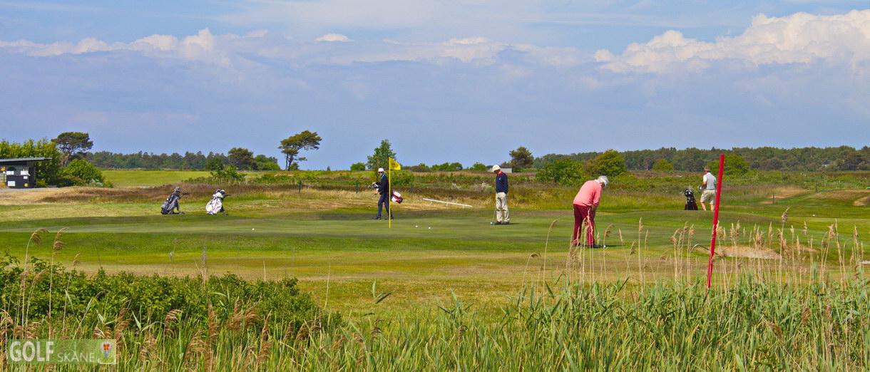 Golf i Skåne banbild- Ljunghusens Golfklubb Adr. golfiskane.se