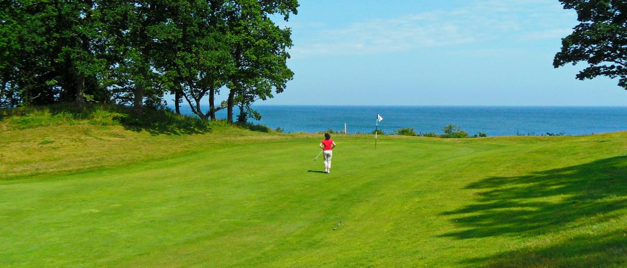 Golf i Skåne - Österlens Golfklubb - Inspel hål 6 med havet i bakgrunden