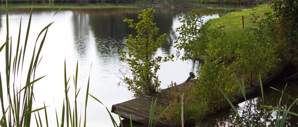 Golf i Skåne - Skyrups Golfklubb - Härlig natur 2