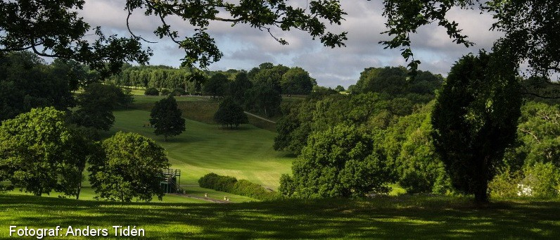 Golf i Skåne - Romeleåsens Golfklubb - bild från banan 5