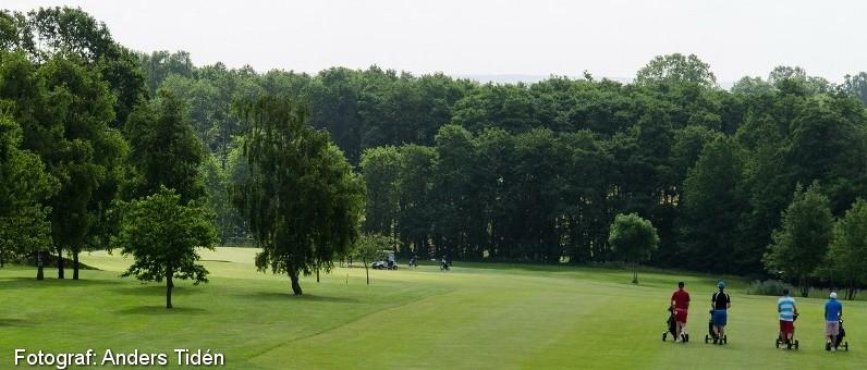 Golf i Skåne - Romeleåsens Golfklubb - bild från banan 6