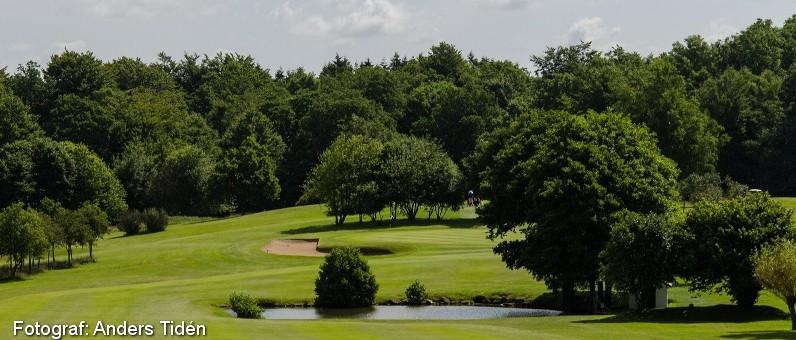 Golf i Skåne - Romeleåsens Golfklubb - bild från banan 9